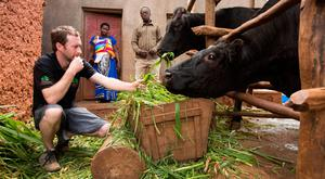 Colm Doyle in Rwanda with a cow donated by his late father through Bóthar 11 years ago. Photo: Sean Curtin True Media
