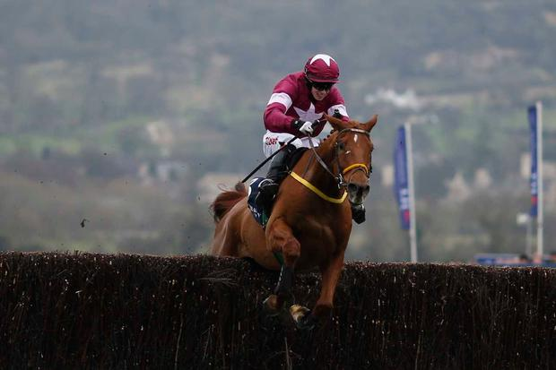 Road to Respect with a thrilling win at Leopardstown