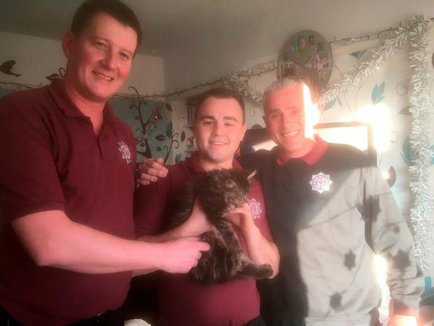 North Yorkshire Fire & Rescue undated handout photo after officers rescued a 12-week-old kitten from inside a living room sofa at a family home in Tadcaster, North Yorkshire. PRESS ASSOCIATION Photo