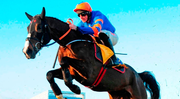 Mick Jazz, with Davy Russell up, on the way to winning the Ryanair Hurdle at Leopardstown yesterday. Photo: PA