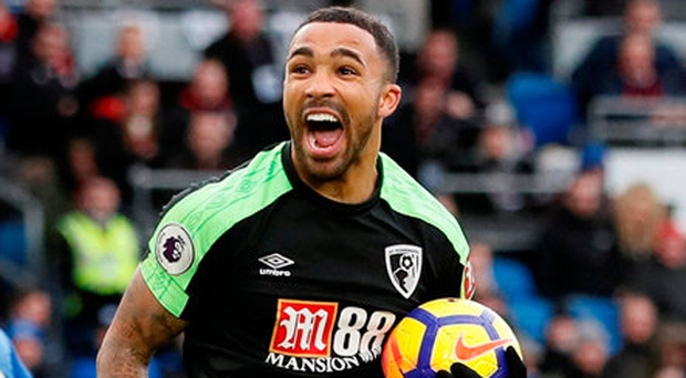 Callum Wilson celebrates after equalising for Bournemouth. Photo: Reuters/David Klein