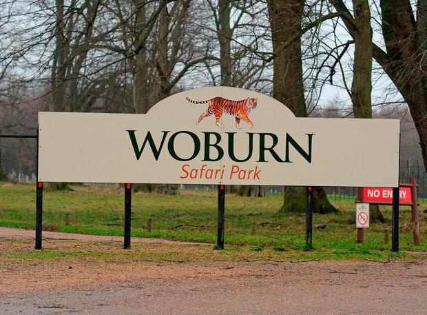 Signage at Woburn Safari Park in Bedfordshire where 13 Patas monkeys have died in a fire John Stillwell/PA Wire