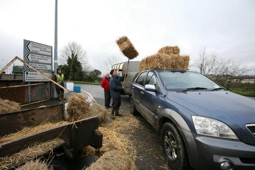 Stocking up on fodder outside the Drumshanbo Horse Fair, Co Leitrim. Photo Brian Farrell