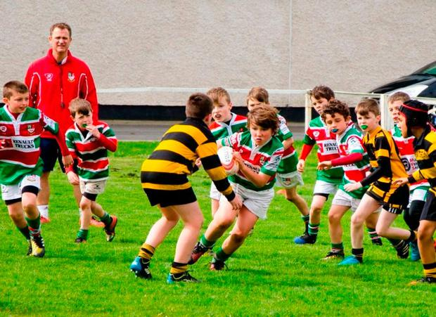 Sunday's Well's minis team in action