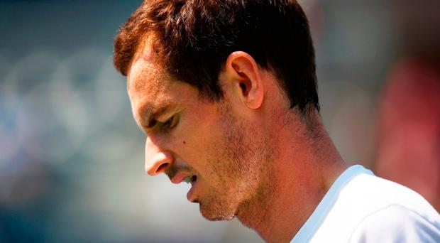 Andy Murray has been nursing a debilitating hip injury for the better part of a year, and seems no nearer to returning to playing at the top level. Photo: Clive Brunskill/Getty Images