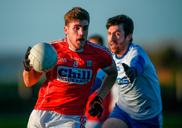 Ian Maguire of Cork in action against Tommy Prendergast of Waterford. Photo by Stephen McCarthy/Sportsfile