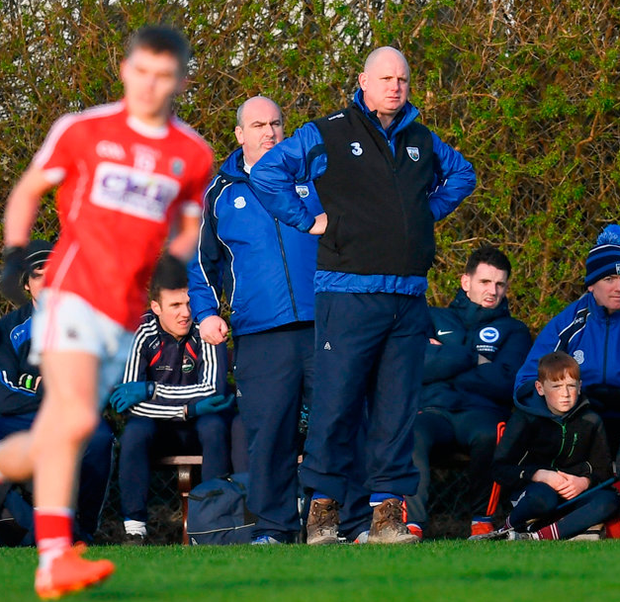 Waterford manager Tom McGlinchey. Photo by Stephen McCarthy/Sportsfile