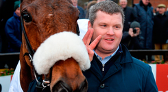 Gordon Elliott with Death Duty after the horse's victory in the Drinmore Chase Photo: Cody Glenn/Sportsfile