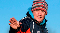 New Cork manager Ronan McCarthy directing the Rebel footballers. Photo: Sportsfile