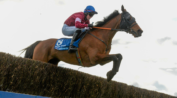 28 March 2016; Rogue Angel, with Ger Fox up, during the first lap on their way to winning the Boylesport Irish Grand National Steeplechase. Horse Racing - Fairyhouse Easter Festival. Fairyhouse, Co. Meath. Picture credit: Cody Glenn / SPORTSFILE