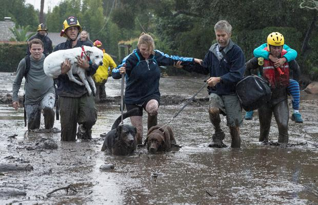 Survivors and their pets are led away to safety from the disaster area. Photo: Reuters