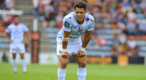 Dan Carter. Photo: Nicolas Tucat