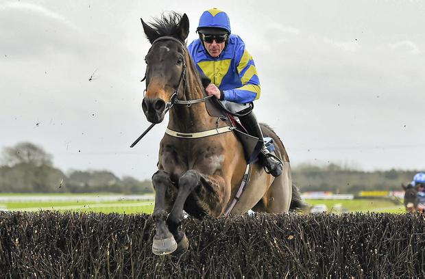Mallowney, with Davy Russell up, jumps the last en route to winning the Dan Moore Memorial Chase at Fairyhouse in 2015.