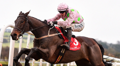 Getabird, with Paul Townend up, in action last month