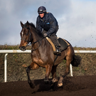 Douvan, with Holly Conte up, going through his paces at Closutton yesterday Photo: Patrick McCann