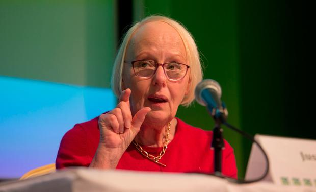 Citizens' Assembly chair Ms Justice Mary Laffoy. Photo: Gareth Chaney, Collins