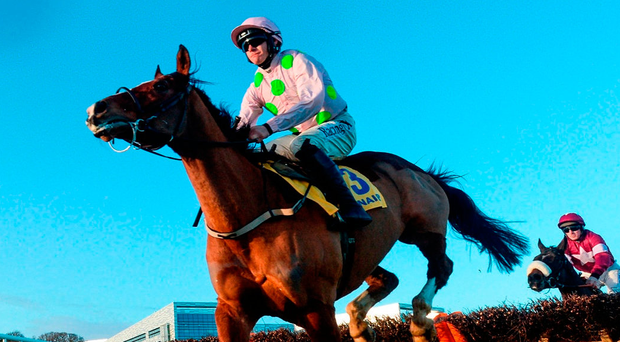 Faugheen, with Paul Townend up, clears the last first-time round, before subsequently pulling up in the Ryanair Hurdle at Leopardstown. Photo: David Fitzgerald/Sportsfile