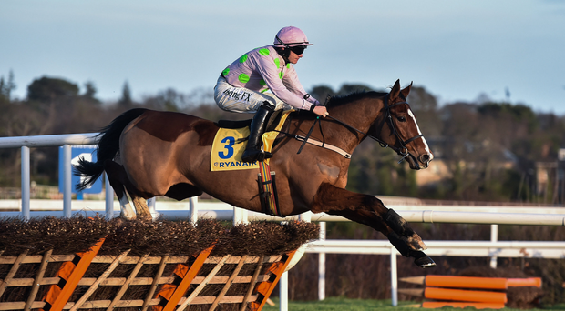 29 December 2017; Faugheen, with Paul Townend up, clears the last first time round, before subsequently pulling up, during the Ryanair Hurdle on day 4 of the Leopardstown Christmas Festival at Leopardstown in Dublin. Photo by David Fitzgerald/Sportsfile