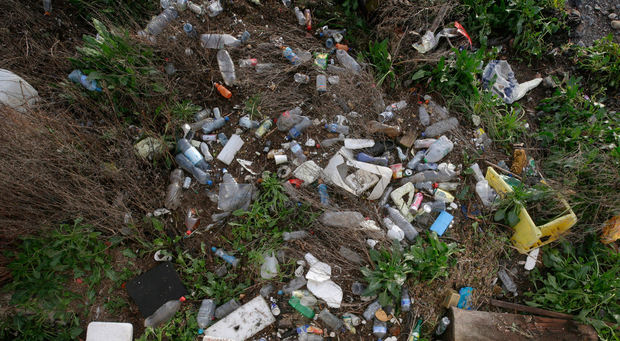Plastic litter is a blight on the Irish landscape