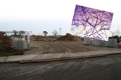 The construction site in Mulgannon, Wexford and (inset) the anthrax bacillus (image via Wikipedia Commons)