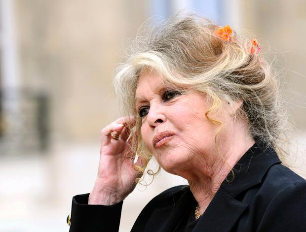 A picture taken on September 27, 2007 shows French film legend and animal rights activist Brigitte Bardot posing at the Elysee palace in Paris after a meeting with former French President Nicolas Sarkozy
