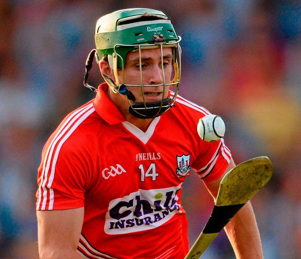 Jamie Wall playing for Cork in 2013. Photo: Stephen McCarthy / Sportsfile