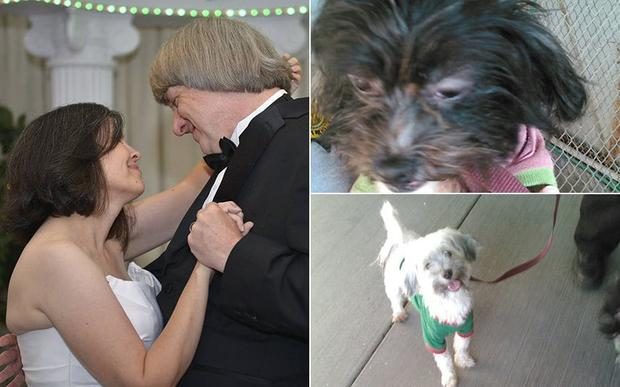 """Police searching David and Louise Turpin's found two small dogs that Joe Vargo, Perris city spokesman, said were in """"good condition"""" Credit: City of Perris"""