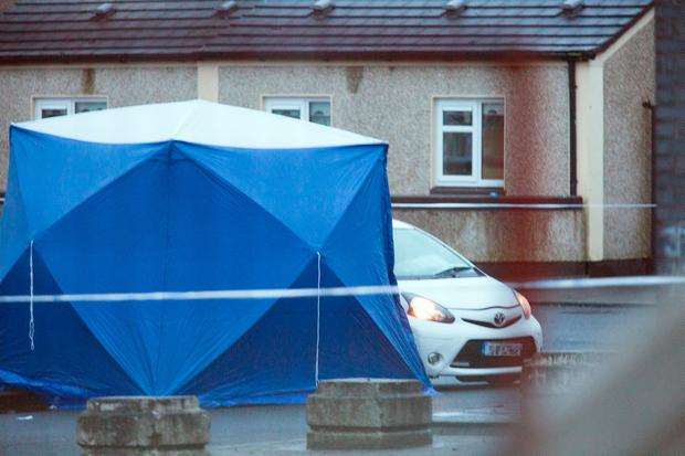 Gunned down in broad daylight: A garda forensic tent is placed over the body of the latest gangland victim who was shot dead sitting in a car at Bridgeview Halting site, Wheatfield. Photo: Tony Gavin