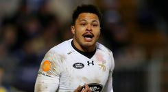 Juan de Jongh returns after injury for Wasps. Photo: David Rogers/Getty Images