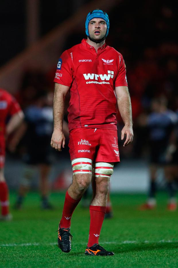 Scarlets' Tadhg Beirne Photo: Michael Steele/Getty Images