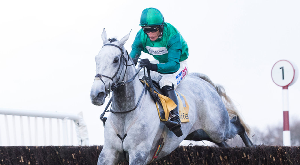 Bristol De Mai is worth watching in this afternoon's Grade Two Cotswold Chase (2.25 Cheltenham). Photo: Getty Images