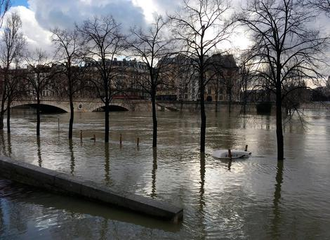 General view of the Seine River that overflows its banks as heavy rains throughout the country have caused flooding, in Paris, France, January 26, 2018. REUTERS/Sandra Auger
