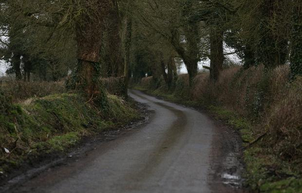 A rural road near Ballivor, Co. Meath where a farmer was assaulted and robbed. Picture credit; Damien Eagers