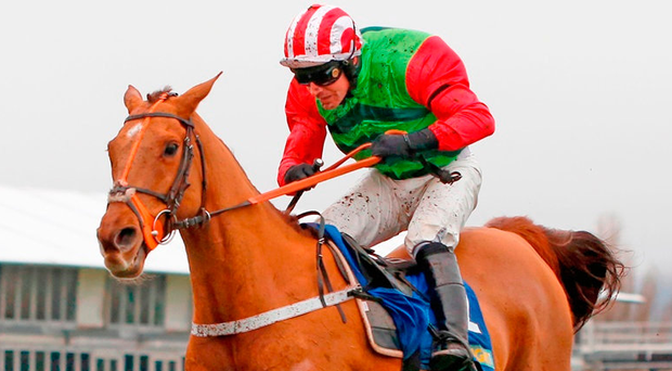 Definitly Red and Danny Cook clear the last fence at Cheltenham yesterday. Photo: Julian Herbert/PA