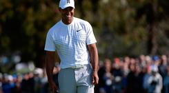 Tiger Woods smiles on the second green