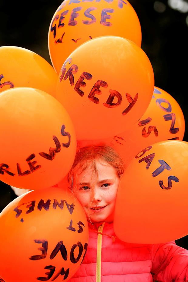 Annie Spence (9), from Killester, at the St Anne's Park protest. Photo: Gerry Mooney