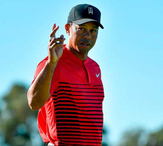 Tiger Woods motions to the crowd after a putt on the 14th green. Photo: Donald Miralle/Getty Images