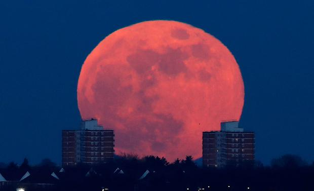 A full moon rises behind blocks of flats in north London. Photo: Reuters