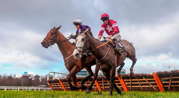 Mr Adjudicator, with Paul Townend up, left, clear the last next to Farclas, with Jack Kennedy up, on their way to winning the Tattersalls Ireland Spring Juvenile Hurdle during Day 2 of the Dublin Racing Festival at Leopardstown Racecourse in Leopardstown, Dublin. Photo by David Fitzgerald/Sportsfile