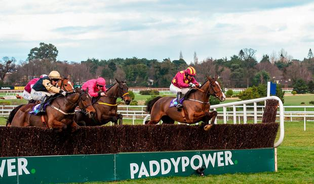 Monalee, with Noel Fehily up, jump the last ahead of Invitation Only, with Paul Townend up, on their way to winning the Flogas Novice Steeplechase during Day 2 of the Dublin Racing Festival at Leopardstown Racecourse in Leopardstown, Dublin. Photo by David Fitzgerald/Sportsfile