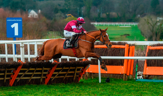 Samcro, with Jack Kennedy up, clear the last on their way to winning at Leopardstown. Photo by David Fitzgerald/Sportsfile