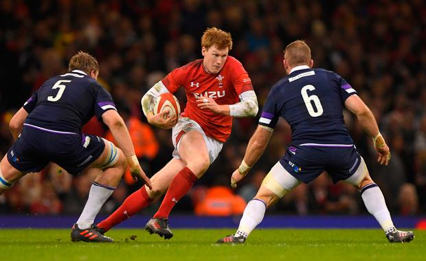 Wales' Rhys Patchell runs at the Scotland defence. Photo: Getty Images