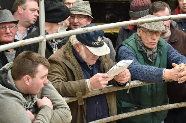 Farmers pictured at Tullow Mart Show and Sale. Photo Roger Jones.