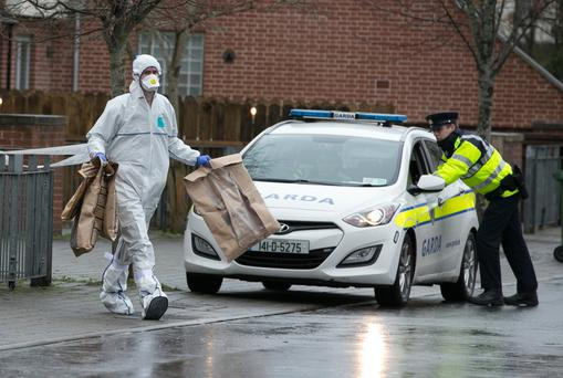 Investigations Continue After Fatal Stabbing in Dublin