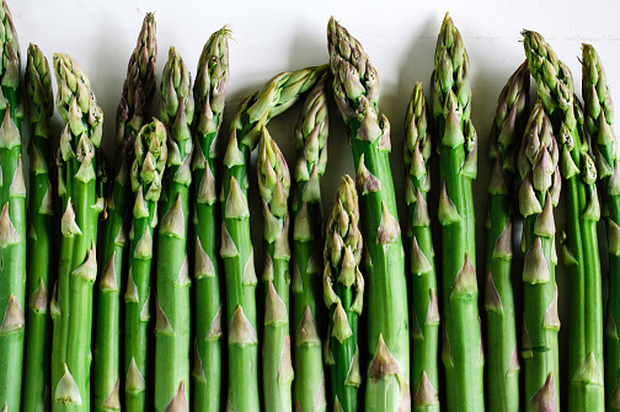 Depriving tumours of asparagine, which is abundant in asparagus, appears to prevent tumours spreading. Photo: Getty
