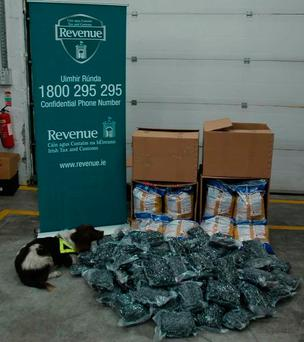 Detector dog Meg with the seized drugs