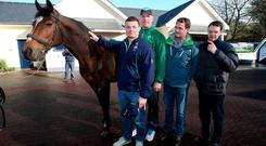 Brian O'Driscoll, Paul O'Connell, MV Magnier and trainer Aidan O'Brien with Galileo at Coolmore Stud