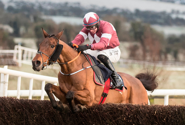 NATIONAL TREASURE: Folsom Blue winning at Punchestown yesterday Pic: Racing Post