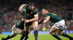 Ireland and Leinster flanker Sean O'Brien co-owns a Dublin 4 pub with three fellow Irish rugby internationals