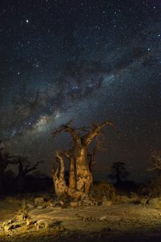 The Milky Way as seen from the Kalahari in Botswana – a number of sites there are to be drilled